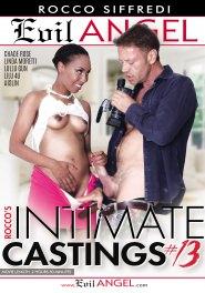 Rocco's Intimate Castings 13, Scene 01