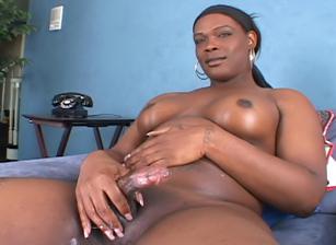 She-Male XTC 05, Scene 05